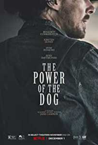 The Power of the Dog (2021) Film Online Subtitrat in Romana